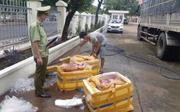 Bắt giữ 300kg thịt heo thối chuẩn bị lên bàn nhậu