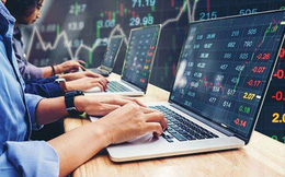 Tự doanh CTCK tiếp tục mua ròng 941 tỷ đồng trong tuần 26-30/10, gom mạnh cổ phiếu bluechip
