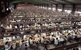 Hy vọng cuối năm cho ngành xuất khẩu tỷ đô Việt Nam