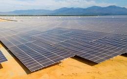 Trả lời câu hỏi của đại biểu Ksor H'Bơ Khăp: Sau này, pin năng lượng mặt trời dùng để làm gì?