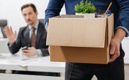 Từ năm 2021, lao động có thể mất việc ngay nếu vi phạm các lỗi dưới đây