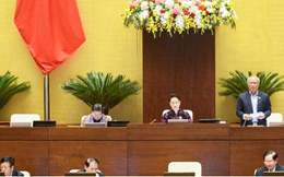 Hôm nay, Quốc hội quyết việc bỏ HĐND quận, phường ở TPHCM