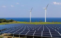 Bình Thuận kiến nghị bổ sung hơn 70 dự án điện gió, mặt trời vào Quy hoạch điện VIII