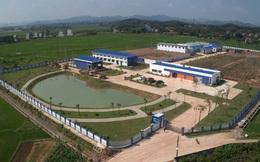Lãnh đạo Thiên Minh Group làm Chủ tịch Ngành nước DNP