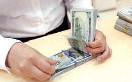 """Tỷ giá USD/VND liên tục xuyên thủng """"ngưỡng chặn"""", Ngân hàng Nhà nước cung ứng thêm VND"""