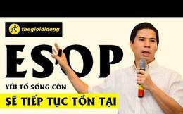 ESOP: Công cụ tài chính được TGDĐ và FPT cực kỳ ưa chuộng, dưới góc nhìn cổ đông, thuế và kế toán Việt Nam