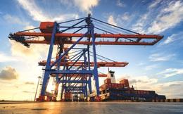 Doanh nghiệp cảng biển đang phục hồi trở lại