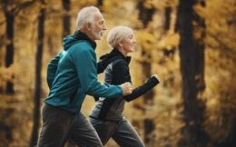 Khoa học chỉ ra 5 chỉ số có thể dự báo tuổi thọ: Tất cả đều liên quan đến một thói quen ít tốn kém lại nâng cao sức khỏe bền vững nhất!