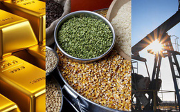 Thị trường ngày 21/11: Giá dầu, vàng, cao su, sắt thép đồng loạt tăng mạnh