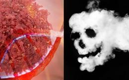 """""""Thủ phạm"""" gây ung thư được nêu tên số 1: Chứa 70 hóa chất phá hỏng ADN, có thể gây ra 12 loại ung thư"""