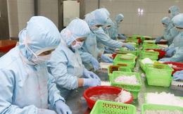Xuất khẩu tôm sang EU tăng trưởng cao nhất kể từ đầu năm