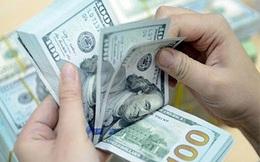 Tỷ giá nhiều khả năng sẽ giảm trong thời gian còn lại của năm 2020