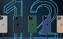 iPhone 12 được phân phối chính thức đúng Black Friday, khách muốn mua hàng chính hãng vẫn phải chờ