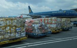 Saigon Cargo Service (SCS) chốt danh sách cổ đông tạm ứng cổ tức đợt 1/2020 bằng tiền tỷ lệ 30%