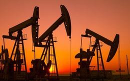 Ngành dầu mỏ Mỹ tin tưởng có thể hợp tác với Joe Biden nếu ông thắng cử