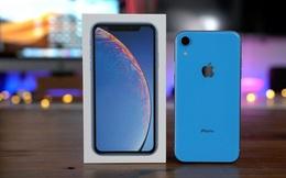 """Vừa tái xuất sau khi """"cháy"""" hàng, iPhone XR đã """"bay"""" 4 triệu đồng, rẻ chưa từng có"""