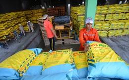 Đề xuất tăng 5% thuế giá trị gia tăng với mặt hàng phân bón