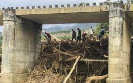 Hàng trăm khối gỗ khai thác trái phép chèn kín, 'đe dọa' cầu Nước Bua