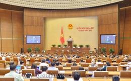 Đại biểu Quốc hội Bắc Giang: Thu từ đất không khác gì hút dầu, xúc than lên để bán!