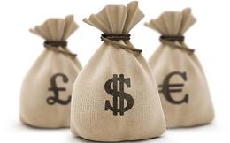 Becamex (BCM) sắp chi hơn 400 tỷ đồng trả cổ tức cho cổ đông