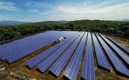 Doanh nghiệp hoạt động được 2 tháng muốn làm 2 dự án điện mặt trời 1.250 MWp ở Đắk Lắk