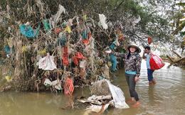 Trả tiền cho những chiếc túi nilon mắc lại cành cây sau lũ: Cách làm từ thiện đầy nhân văn ở Quảng Bình nhận nhiều lời khen từ cộng đồng mạng