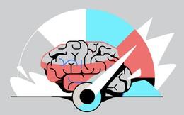 Vì sao có tới 5 thói quen chủ chốt có thể rèn luyện trí não để đạt được hiệu suất cao nhất? Cách lý giải từ chuyên gia thần kinh học ai cũng thấy chí lý