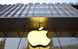 Nikkei Asia: Apple sẽ chuyển thêm năng lực sản xuất sang Ấn Độ và Việt Nam, bất kể ai là tổng thống Hoa Kỳ