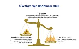 Hai thái cực của bức tranh ngân sách năm 2020