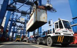 Xuất khẩu gặp khó do thiếu hụt container rỗng