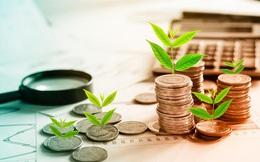 Cuối năm, nhà đầu tư chọn rót vốn vào đâu?