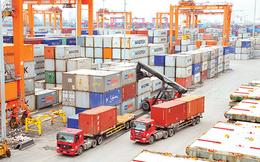 Cổng thông tin hướng dẫn xuất nhập khẩu hàng hóa chính thức vận hành