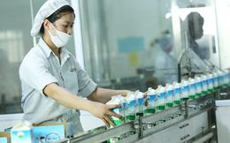 Mộc Châu Milk chào sàn Upcom với giá tham chiếu 30.000 đồng/cp