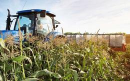 Khắc phục sản xuất manh mún nhờ bài toán chuyển đổi số trong nông nghiệp Việt Nam