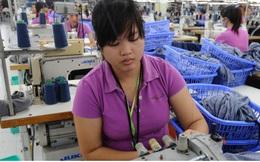 Nhiều mặt hàng của Việt Nam đã ngay lập tức được hưởng lợi từ EVFTA