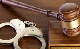 Truy tố Giám đốc CIPC và đồng phạm tham ô tài sản Nhà nước
