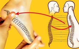 Tự chăm sóc cơ thể bằng cách xoa bóp bàn chân đơn giản, đủ lợi ích cho sức khỏe: Giảm đau cột sống, điều hòa huyết áp và đặc biệt giúp ngủ ngon
