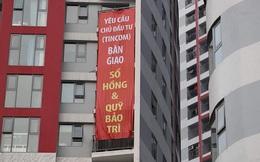 Ngân hàng BIDV rao bán loạt tài sản của Tập đoàn Thăng Long (Tincom Group) - chủ đầu tư chung cư Imperial Plaza 360 Giải Phóng