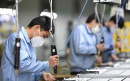 Thêm 22 doanh nghiệp Nhật dự kiến đến Việt Nam