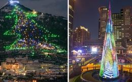 Những cây thông Noel đặc biệt được ghi nhớ nhất trong lịch sử các mùa Giáng sinh khắp thế giới, kỳ công đến mức khiến ai cũng phải trầm trồ