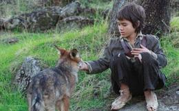 """Câu chuyện có thật về """"cậu bé rừng xanh"""" được bầy sói nuôi dưỡng trong 12 năm và cuộc sống sau khi tái hòa nhập cộng đồng con người"""
