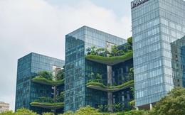 """Cơ hội để ngành sản xuất vật liệu """"xanh"""" Việt Nam bứt phá"""