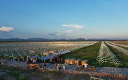 Tập đoàn Trung Quốc hoàn thành việc cấp 273 MW tấm pin cho Nhà máy điện mặt trời Xuân Thiện - Ea Súp
