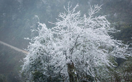 Không khí lạnh bao trùm miền Bắc, vùng núi cao có nơi dưới 0 độ C