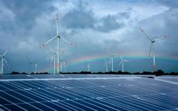PEWG kiến nghị gia hạn giá FIT điện gió và mặt trời
