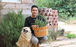 Chàng trai bỏ du học về Đà Lạt dựng ngôi nhà gỗ xinh xắn, làm nông trại và kể câu chuyện thời thanh xuân của riêng mình