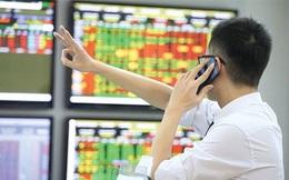 """Nhà đầu tư chú ý: HoSE bắt đầu nâng lô giao dịch tối thiểu lên 100 từ 4/1, chỉ còn phiên hôm nay để """"làm tròn"""" danh mục"""