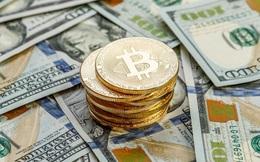 Năm 2020: USD mất 7% xuống thấp nhất hơn 2 năm, Bitcoin tăng 300% lên cao kỷ lục gần 29.000 USD