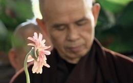 Thiền sư Thích Nhất Hạnh: Con người luôn có khuynh hướng chạy trốn khổ đau để đi tìm an lạc