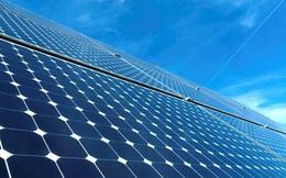 Bamboo Capital (BCG): Tiếp tục vận hành điện mặt trời 49,3 MW Vĩnh Long, tổng đầu tư 1.156 tỷ đồng